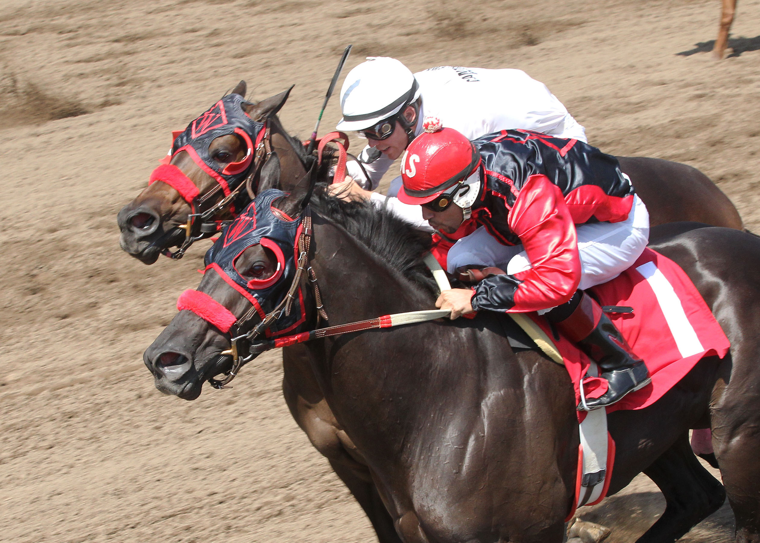 Glory Rider - Filles and Mares Race for Hope Bonus Challenge - 08-17-13 - R01 - CBY - Inside Finish