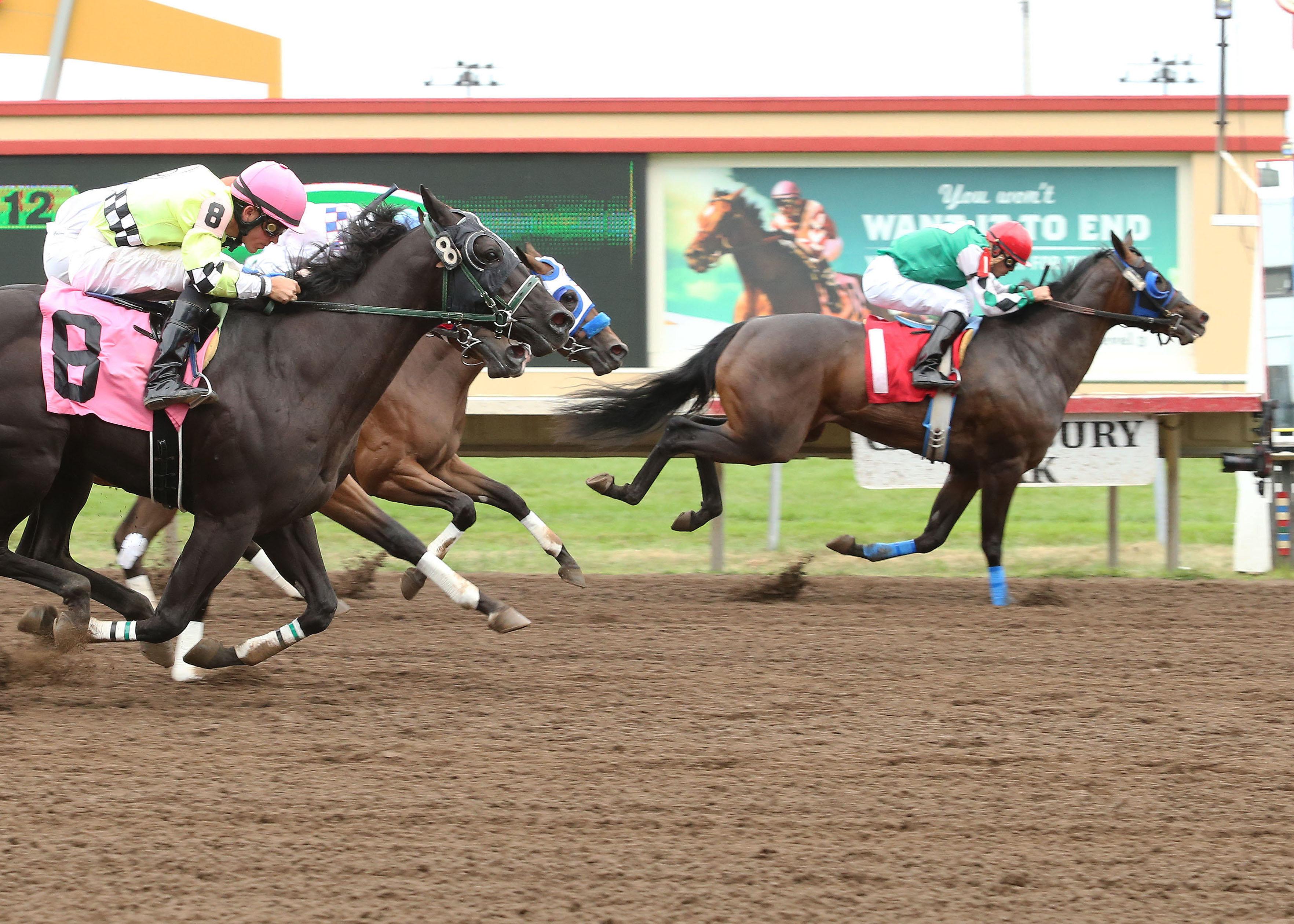Seis The Royal Cash - North Central Quarter Horse Racing Association Futurity - 08-04-13 - R08 - CBY - Finish