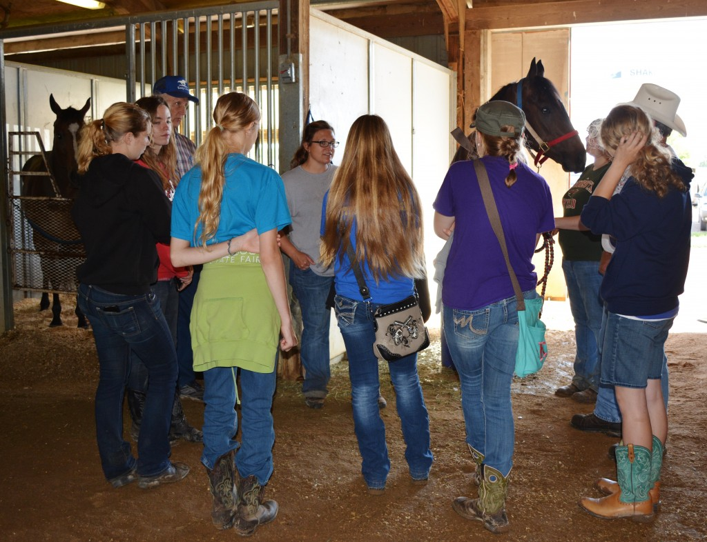 Learning about training racehorses from Amber and Jason Olmstead. Photo by Annise Montplaisir