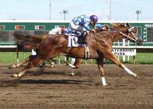 HADA CERTAIN CHARM_Minnesota Stallion Breeders' Quarter Horse Futurity_06-24-12_CBY_Finish
