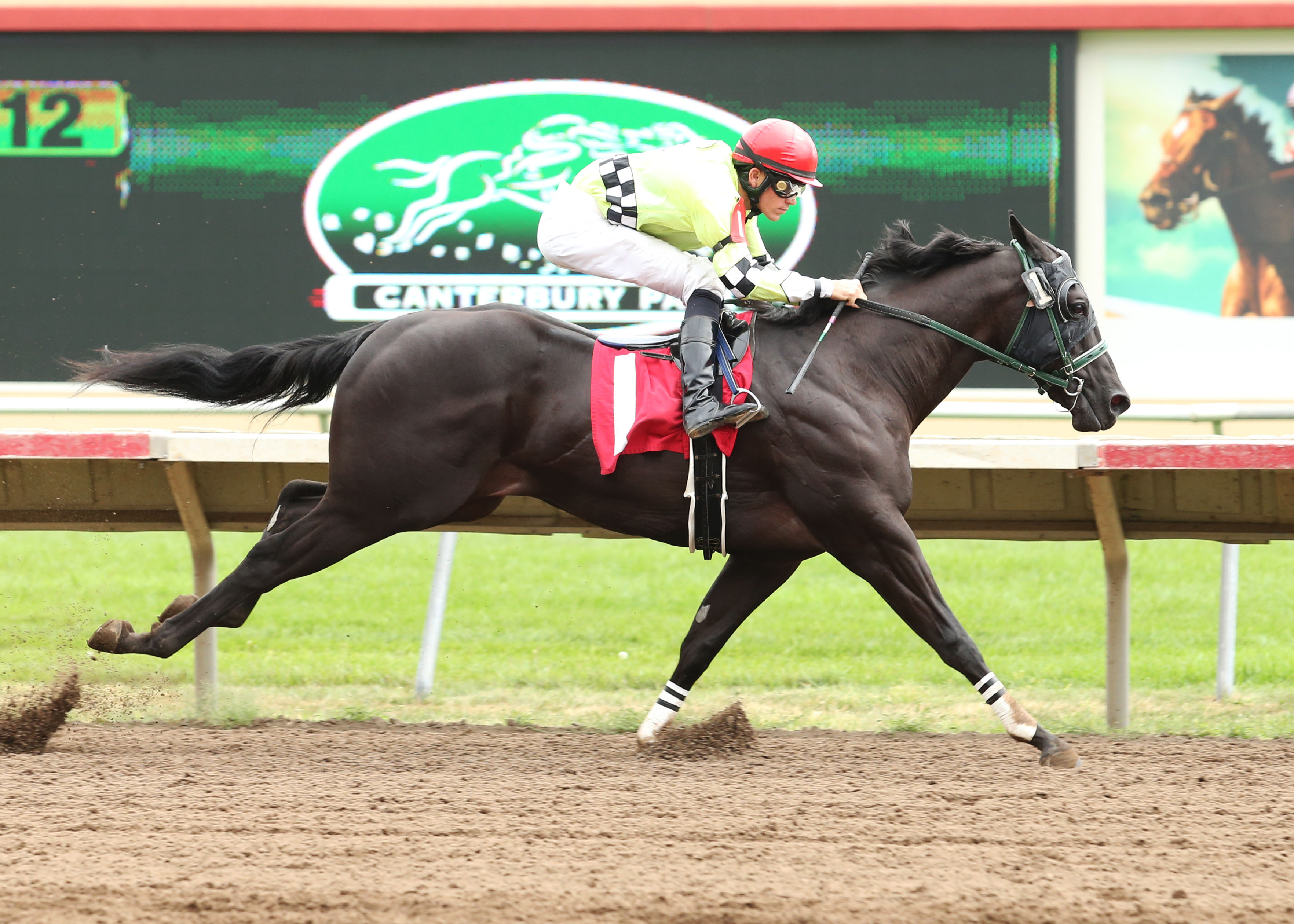 Sportwagon - Minnesota Quarter Horse Futurity - 09-01-13 - R02 - CBY - Finish