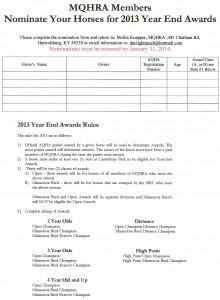 2013 Year End Award Nomination Form