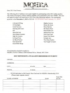 2015 MSBF Nomination Form