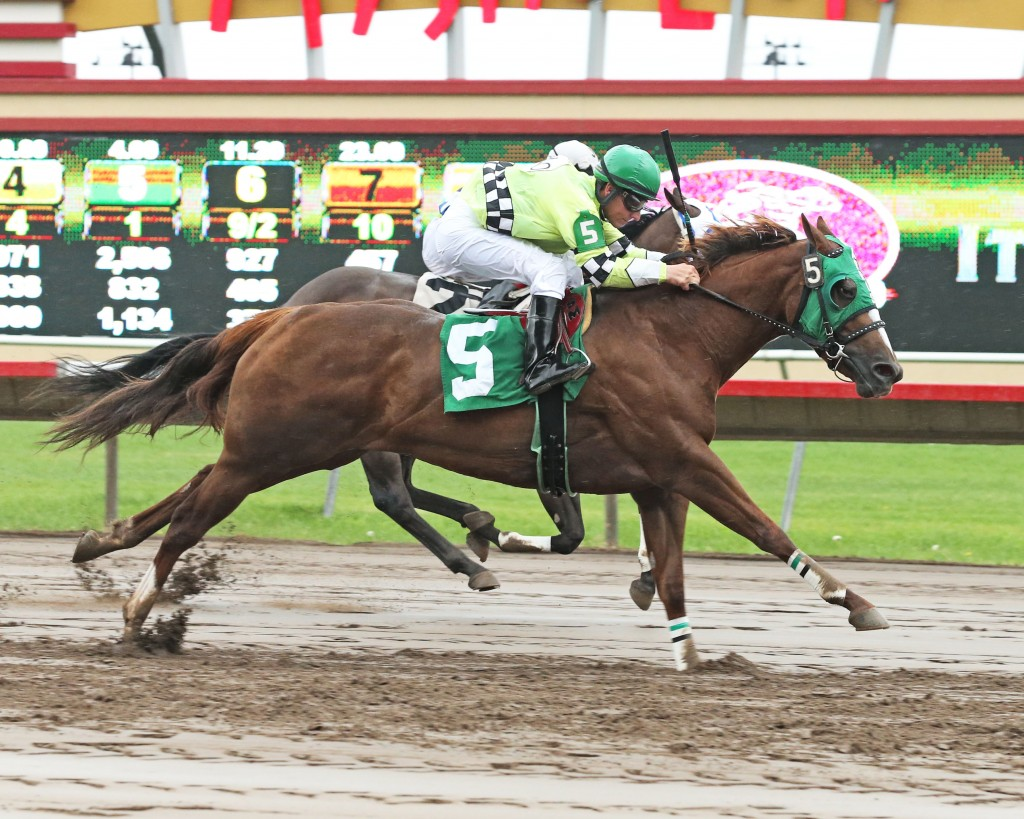 Dirt Road Queen - Bob Morehouse Stakes - 07-12-14 - R02 - CBY - Finish