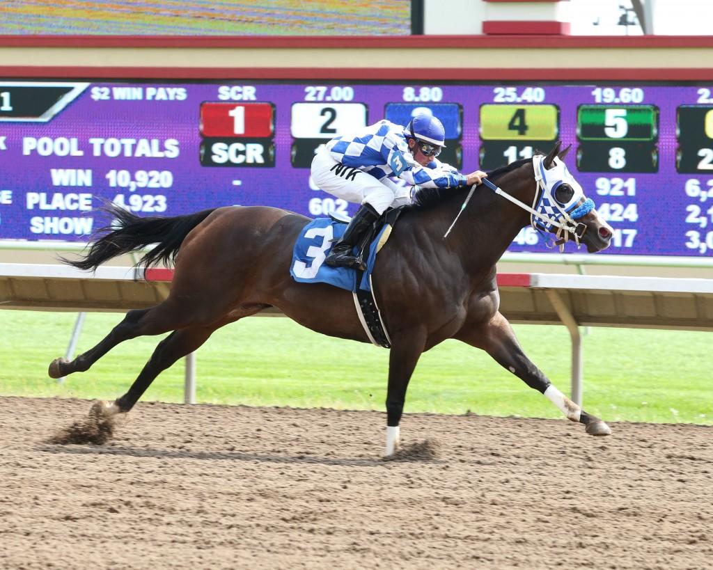 Furys Folly - Minnesota Quarter Horse Derby - 08-31-14 - R01 - CBY - Finish