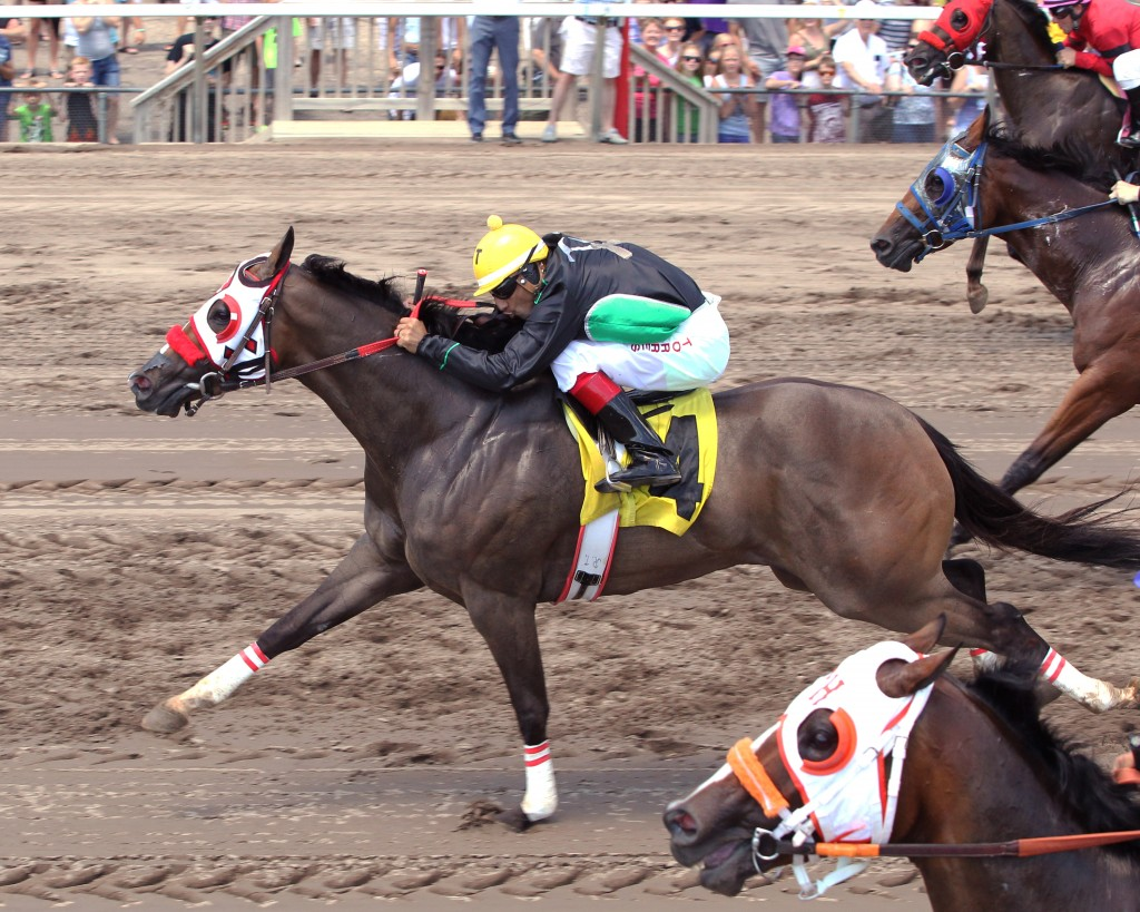 Defiant Red Rooster - Dash in a Flash Stakes - 07-18-15 - R02 - CBY - 003