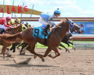 EYRA HAYES - Minnesota Quarter Horse Derby - 08-21-16 - R02 - CBY - Finish