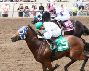 FASTER THAN HASTA - Minnesota Stallion Breeder's Futurity - 07-10-16 - R04 - CBY - Inside Finish