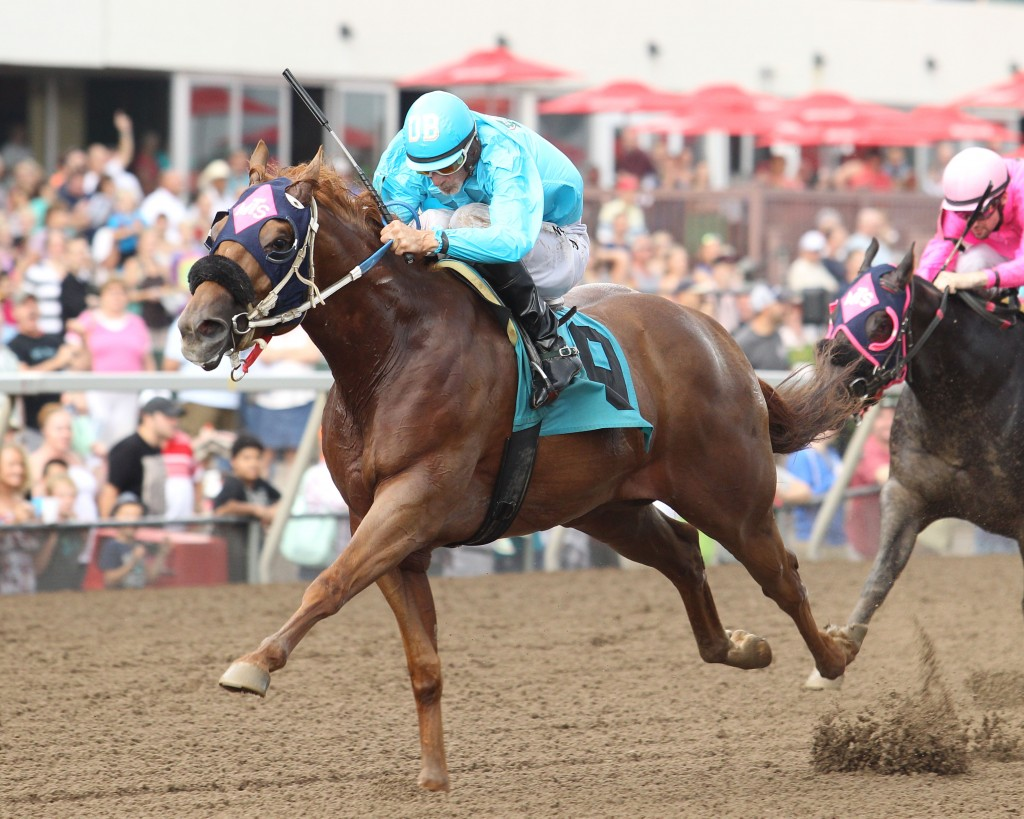 FISHIN IN THE BROOK - Minnesota Quarter Horse Derby - 09-06-15 - R02 - CBY - 003