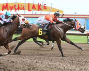 JUSTIFIED - Canterbury Park Quarter Horse Derby - 07-10-16 - R05 - CBY - Finish