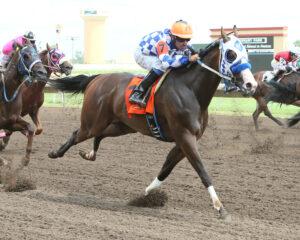 V OS FILO - Cash Caravan Stakes - 07-31-16 - R03 - CBY - Finish