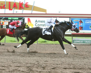 VODKA AT MOONLIGHT - Minnesota Quarter Horse Futurity - 08-21-16 - R01 - CBY - Finish 2