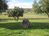 First Down Dash gravesite at Vessel's Stallion Ranch.jpg